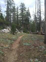 James hiking