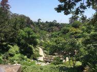 Japanese Garden Balboa Park
