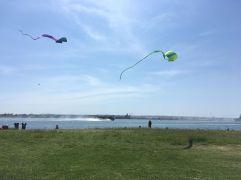 Kites San Diego